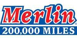 Merlin250x125