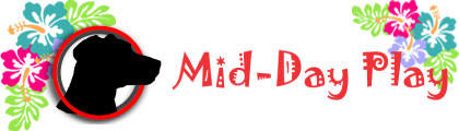 MDP-CNN-luau